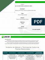 RAEnriquez_Andamio de métodos de cultivo.docx