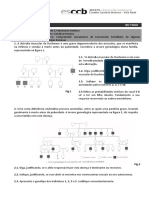 FT10 -  Genetica Humana 2