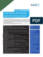 Control prenatal 19_guia (1).pdf