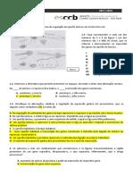 FF7- Operao-cor.docx