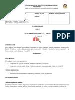 CIENCIAS NATURALE. III PERIODO. GUIA 2. CURSO 6.1 - copia