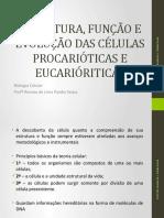 2. Estrutura, Função e Evolução Das Células Procarióticas
