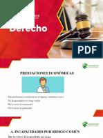 PRESTACIONES ECONÓMICAS DE SALUD (1)