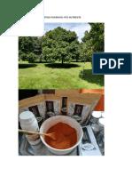PDF EL MANGOSTINO PODEROSO FITO NUTRIENTE .pdf