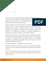 CASO DE AUDITORIA DE SISTEMAS