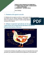 Plan Avicola