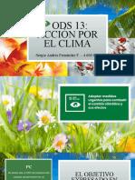 Objetivo de Desarrollo Sostenible 13 - ODS 13