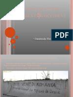Studiu de caz III - Romania în orient si Occident