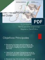 30_01_2009_neurofisiologiadeldolor (1) (1).pdf