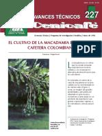 Macadamia con cafe