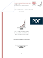 Flujo uniforme HSLB +16(Subgrupo2)