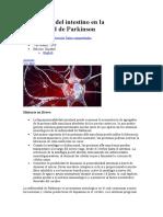 La función del intestino en la enfermedad de Parkinson