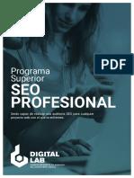 Descargable_Seo Profesional (3).pdf