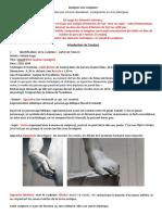 analyse_sculpture_david_michelange(1).pdf