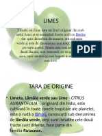 limes ppt