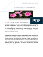 Fernandez-Launi-Caso De Estudio Ecuador; Una Futura Exportación Rosada.pdf