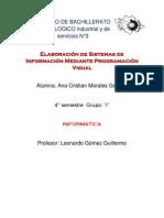 Ana Cristian Morales Goches