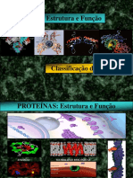 aminoácidos 1.pdf