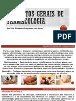 Conceitos Gerais Aula Apoio.pdf