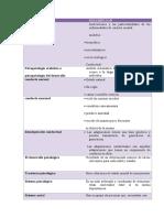 CONCEPT1.docx