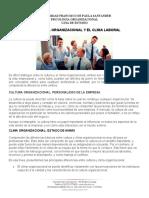 21-10-20-GUIA CULTURA Y CLIMA ORGANIZACIONAL.doc