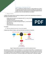 Máquinas térmicas y Refrigeradores y Bombas de Calor.pdf