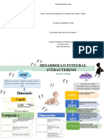 Mapas conceptuales desarrollo infantil.