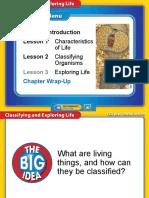 1-1-life-summary