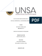 ENVASES PRÁCTICA N 3-FELICITASPILAROCA.pdf