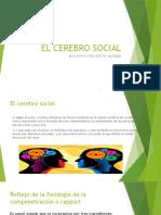 EL CEREBRO SOCIAL