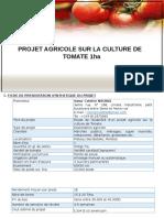 PROJET TOMATE1.pdf