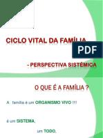 Ciclo Vital da Família_Dina Carvalho