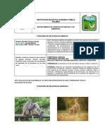 funciones_de_relacion_en_animales (1).pdf