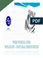 WILDLIFE - Review I