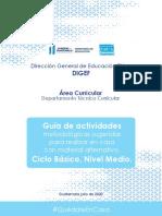 Guiėa de actividades metodoloėgicas sugeridas para realizar en casa con material alternativo. Ciclo Baėsico, Nivel Medio..pdf