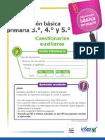 Cuadernillo-Cuestionariosauxiliares-3-1