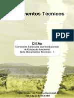 CIEAS - orgao gestor EA.pdf