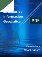 SIG basico- CEASE.pdf