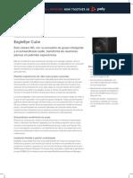 eagleeye-cube-ds-es_xl.pdf