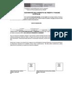 INSTRUCCIONES_DDJJ_COTITULAR