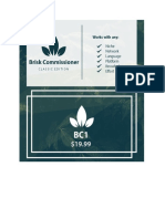 Brisk Commissioner.pdf