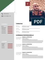 74-modele-cv-developpeur-web