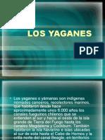 DISERTACIÓN LOS YAGANES