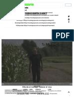 La agricultura digital allana el camino hacia la sostenibilidad agrícola -.pdf