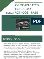 RAEE-GESTION RS.pdf