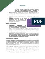 Clase nº 4 Neoplasias (1).pdf