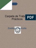 carpeta  Artropodos parte 1-convertido.pdf