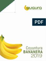 COYUNTURA-BANANERA-2019-EDICION-FINAL