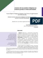 Dialnet-DerechosHumanosDeLosPueblosIndigenasEnClaveDePlura-7024194.pdf