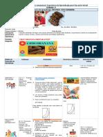 PREPARATORIA PLANIFICACION  SEMANA 17.docx